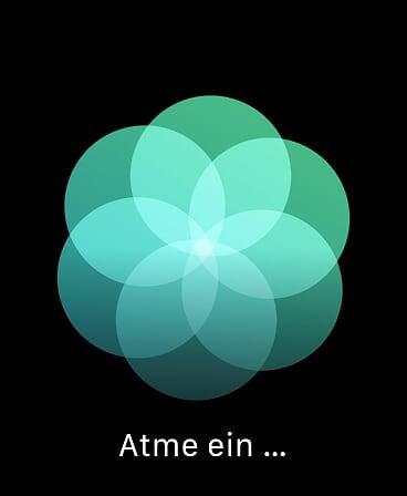 Apple Watch Atmen Einatmen